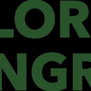 Chlorophyll Kongress 2020